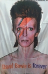 DAVID BOWIE Aladdin Sane FLAG CLOTH POSTER WALL TAPESTRY GLAM ROCK