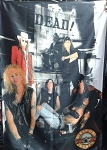 GUNS N' ROSES Band 3 FLAG BANNER CLOTH POSTER WALL TAPESTRY