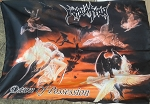 IMMOLATION Dawn of Possession FLAG BANNER CLOTH POSTER Death Metal
